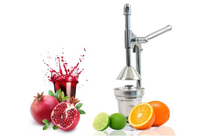 ციტრუსის პროფესიონალი წვენსაწური Fruit Juicer